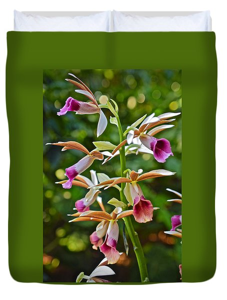 Spring Show 15 Nun's Orchid 1 Duvet Cover