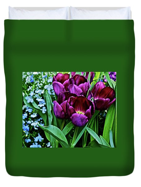 Duvet Cover featuring the photograph Spring Show 18 Red Violet Tulips And Lobelia by Janis Nussbaum Senungetuk