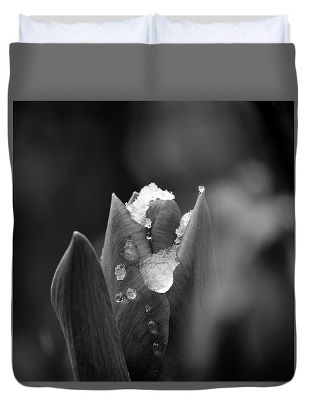 Spring Start Duvet Cover by Silke Brubaker