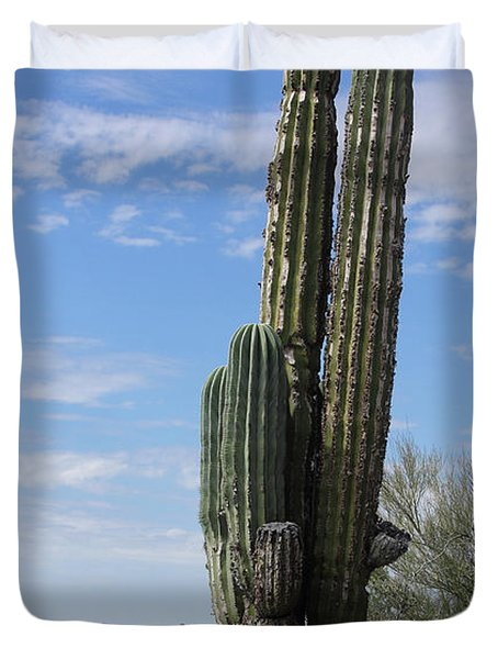 Spring Time In Tucson Duvet Cover