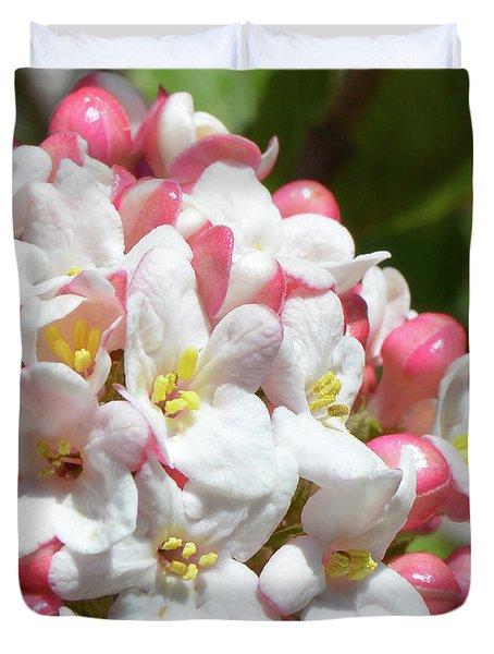 Viburnum Blossoms Duvet Cover