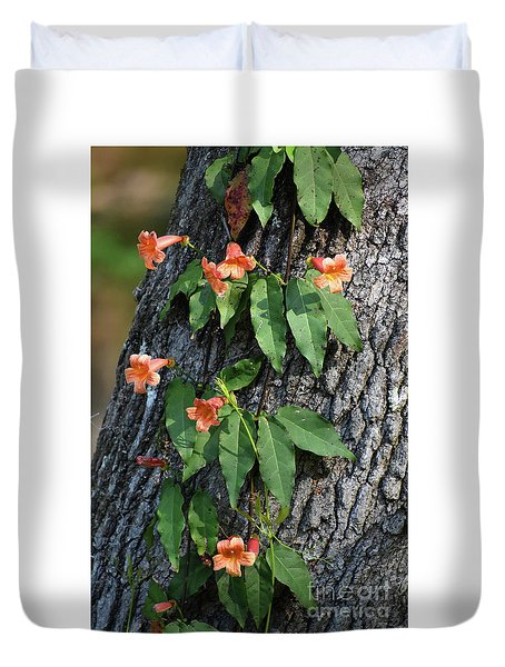Duvet Cover featuring the photograph Vinery by Skip Willits
