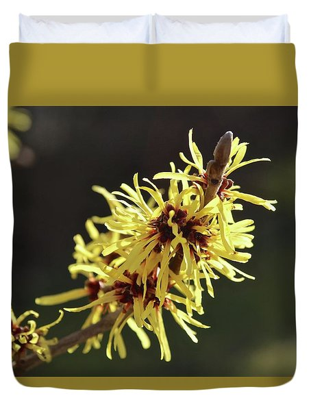 Duvet Cover featuring the photograph Spring by Wilhelm Hufnagl