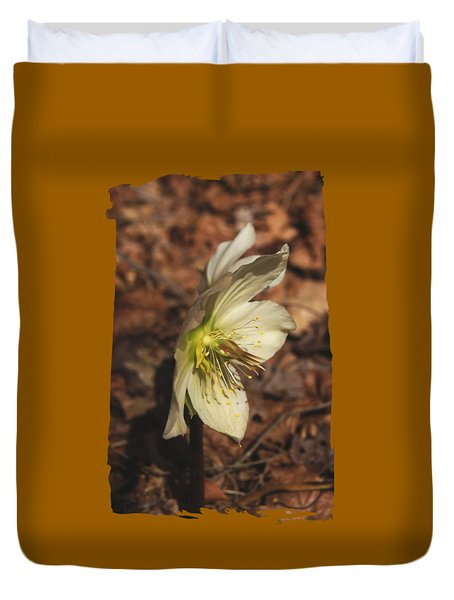 Duvet Cover featuring the photograph Springtime Helleborus by Margie Avellino