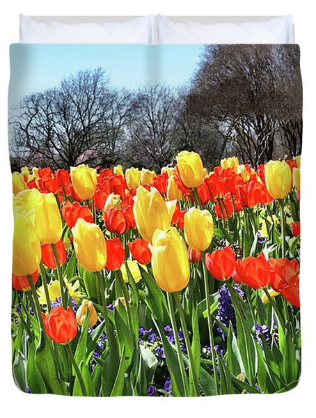 Springtime Tulips In Texas. Duvet Cover