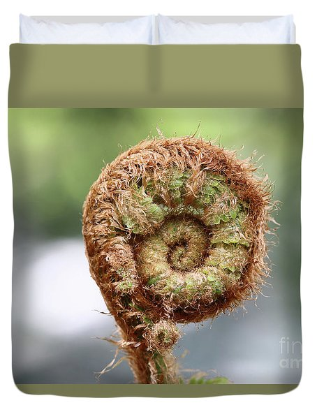 Sprout Of Ferns Duvet Cover by Michal Boubin