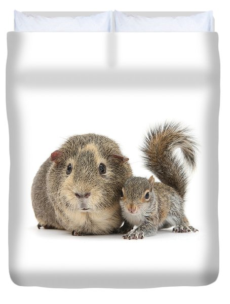 Squirrel And Guinea Duvet Cover