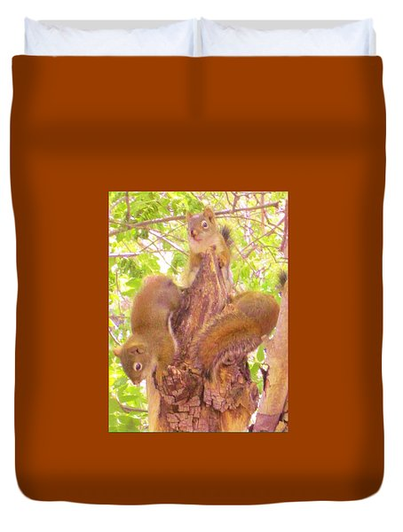 Duvet Cover featuring the photograph Squirrel Babies Play by Cathy Long