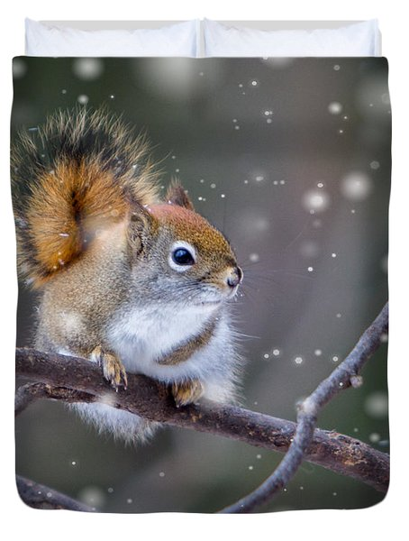 Squirrel Balancing Act Duvet Cover by Patti Deters
