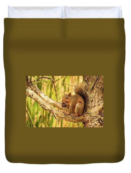 Squirrel In A Tree In The Marsh Duvet Cover
