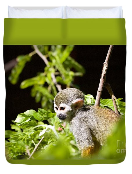 Squirrel Monkey Youngster Duvet Cover by Afrodita Ellerman