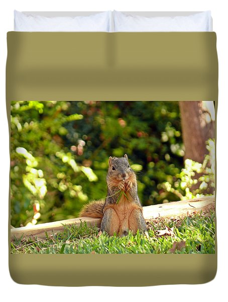 Squirrel On A Log Duvet Cover