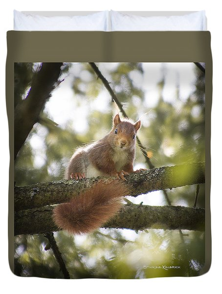 Duvet Cover featuring the photograph Squirrel On The Spot by Stwayne Keubrick