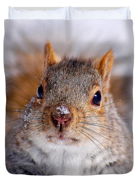 Squirrel Portrait Duvet Cover by Mircea Costina Photography