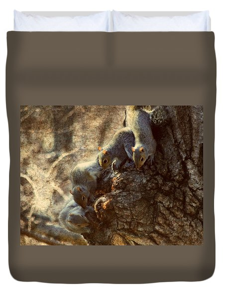 Squirrels - A Family Affair Xi Duvet Cover