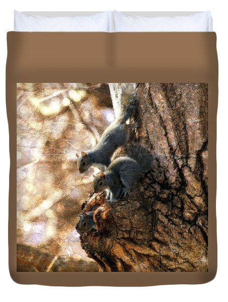 Squirrels - A Family Affair Xii Duvet Cover