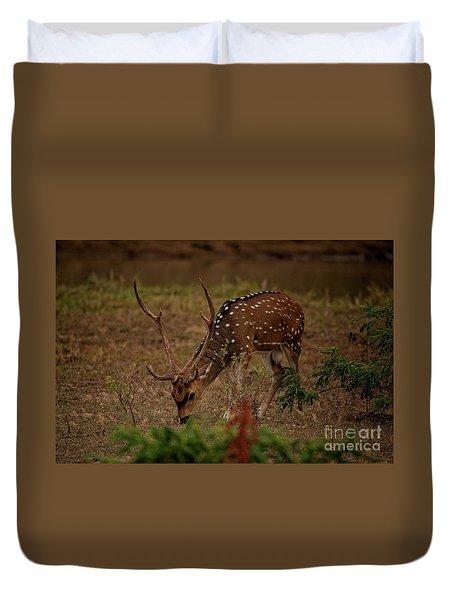 Sri Lankan Axis Deer Duvet Cover