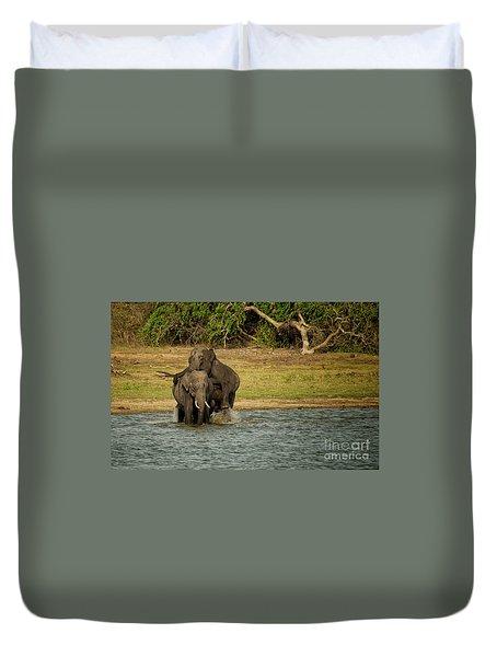 Sri Lankan Elephants  Duvet Cover