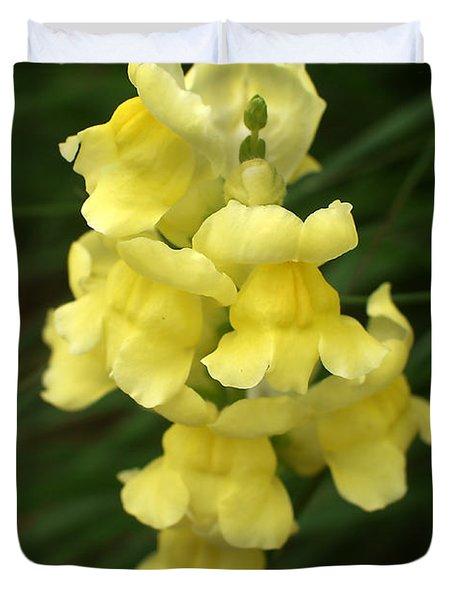 St. Johns Flower 866 Duvet Cover