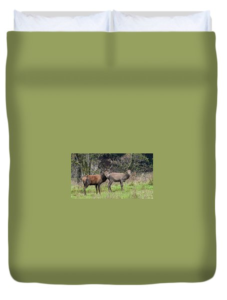 Stag And Doe  Duvet Cover
