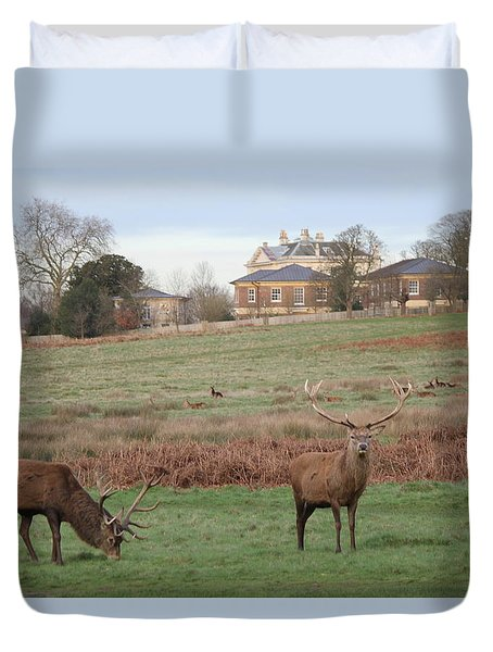 Stags In Richmond Park Duvet Cover