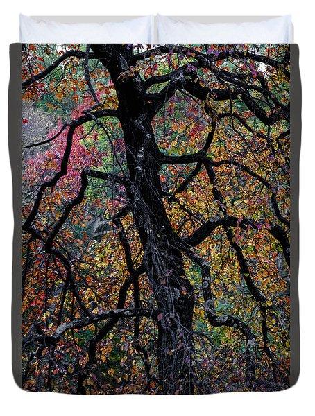 Staind Glass Tree 1 Duvet Cover