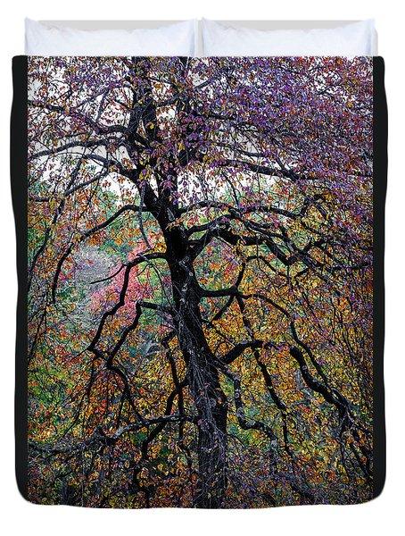 Staind Glass Tree 3 Duvet Cover by Kevin Blackburn