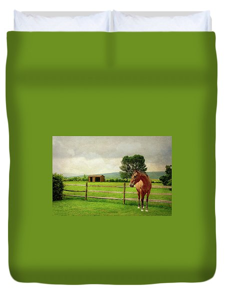 Duvet Cover featuring the photograph Stallion At Fence by Diana Angstadt