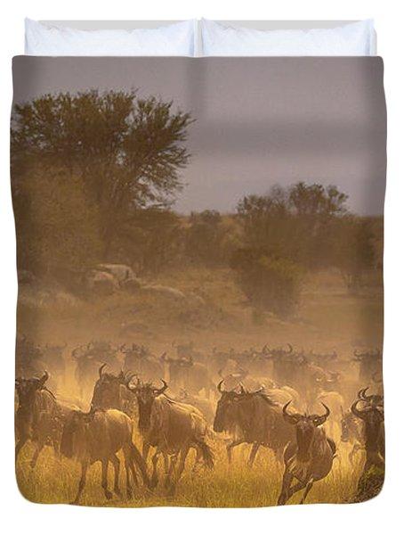 Stampede-serengeti Plain Duvet Cover
