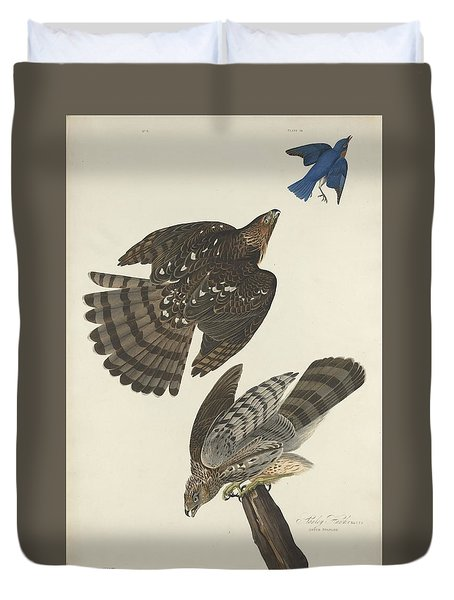 Stanley Hawk Duvet Cover by Rob Dreyer