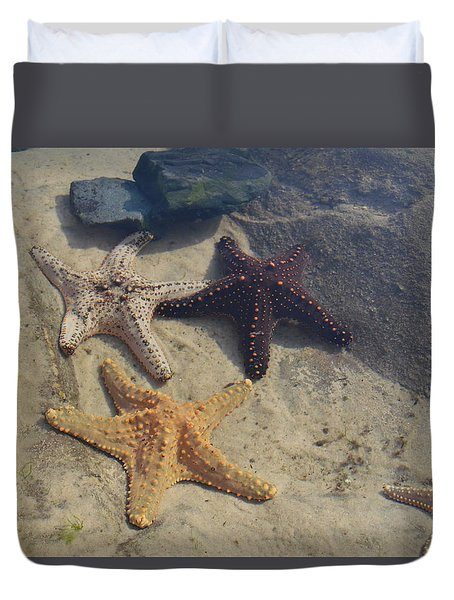 Star Fish Cluster Duvet Cover