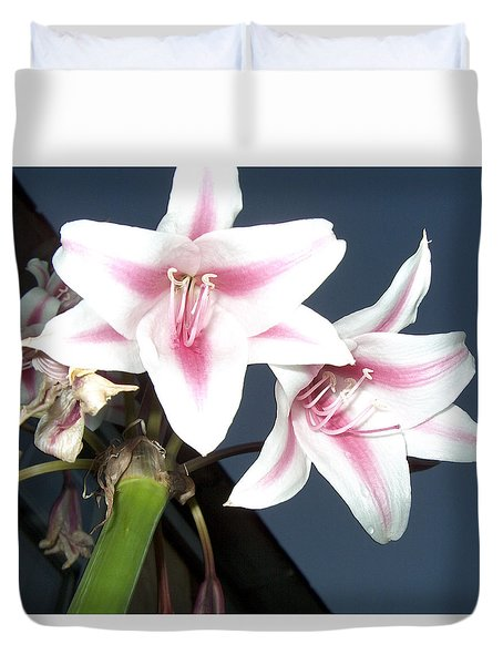 Star Flower Duvet Cover