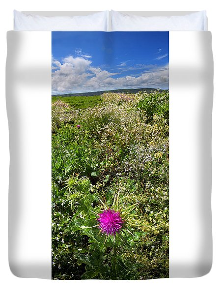 Star Thistle Flower In Marin County California Panorama Duvet Cover