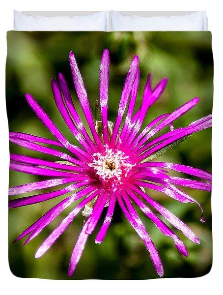 Starburst Of The Wildflowers Duvet Cover by John Haldane