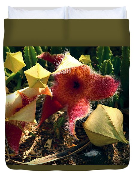 Starfish Of The Desert Duvet Cover
