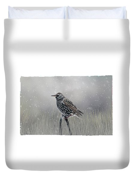 Starling In Winter Duvet Cover