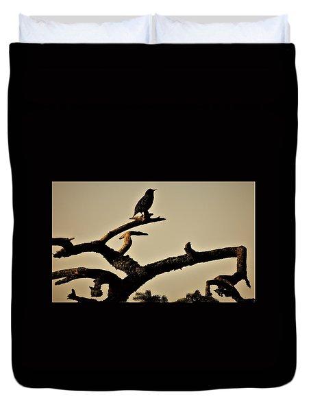 Starling Duvet Cover by Karen Horn