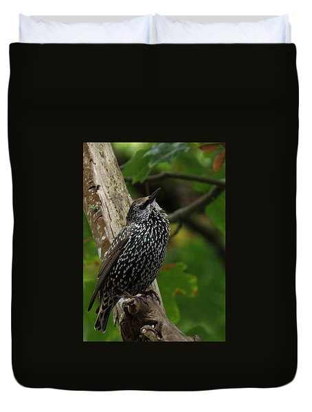 Starling Pride Duvet Cover