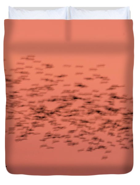 Starlings Sweeping Past Aberystwyth War Memorial Duvet Cover
