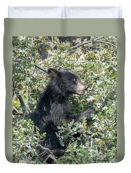 Duvet Cover featuring the photograph Startled Black Bear Cub by Stephen  Johnson