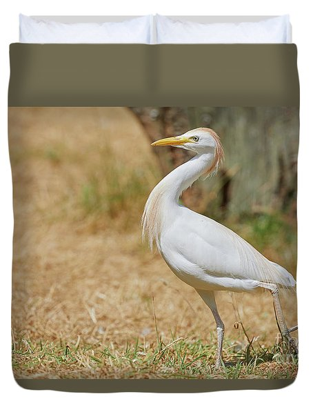 Duvet Cover featuring the photograph Stately Walking Cattle Egret by Nick Biemans