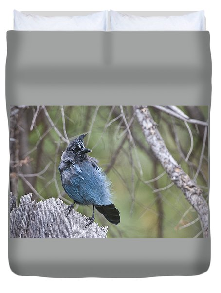 Duvet Cover featuring the photograph Stellar's Jay by Gary Lengyel