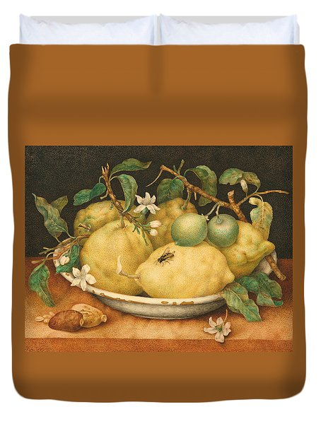 Still Life With A Bowl Of Citrons Duvet Cover by Giovanna Garzoni