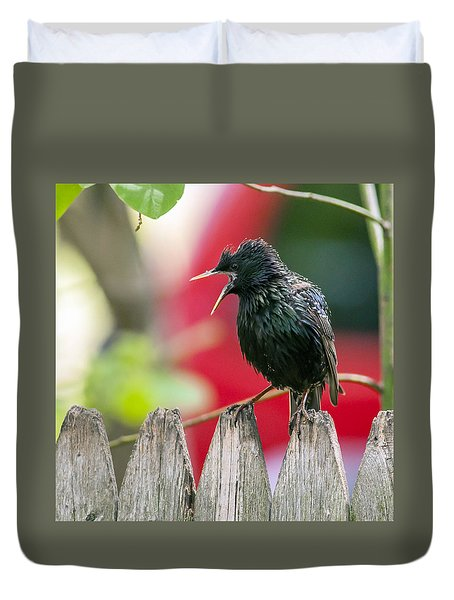 Still Squawking Duvet Cover
