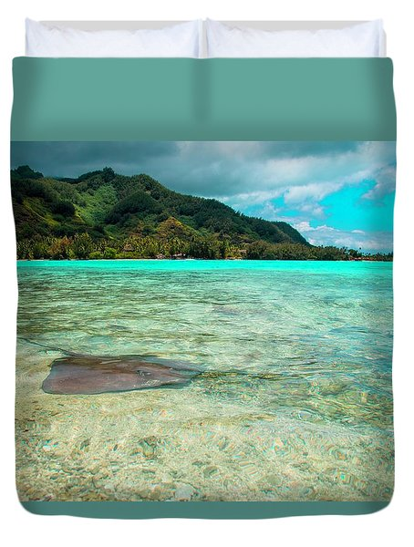 Stingray Duvet Cover