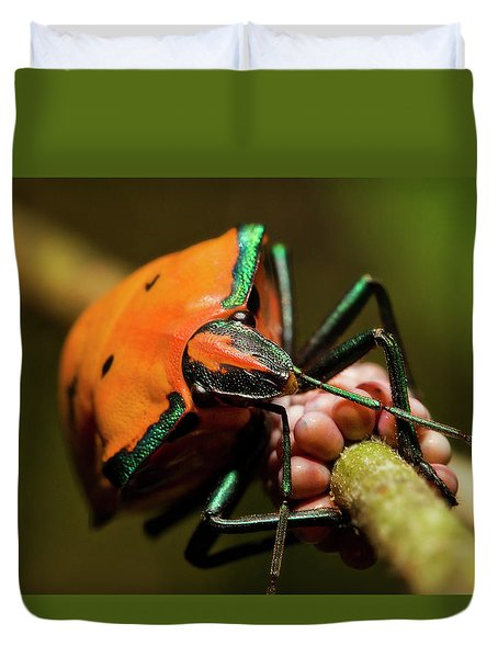 Stink Bug 666 Duvet Cover