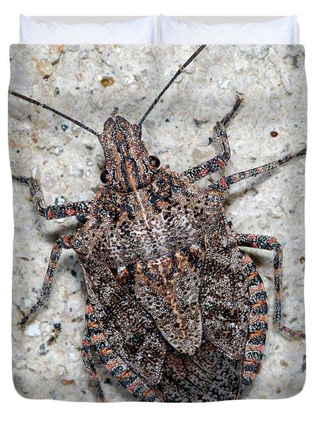 Stink Bug Duvet Cover