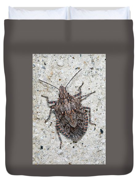 Duvet Cover featuring the photograph Stink Bug by Breck Bartholomew