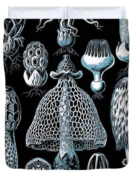 Stinkhorn Mushrooms Vintage Illustration Duvet Cover