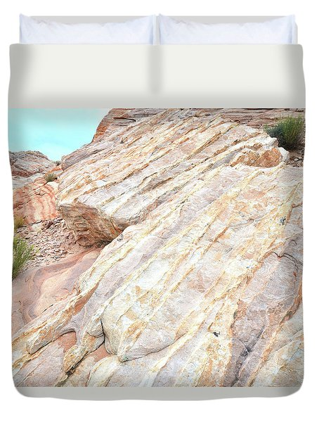 Duvet Cover featuring the photograph Stone Feet In Valley Of Fire by Ray Mathis